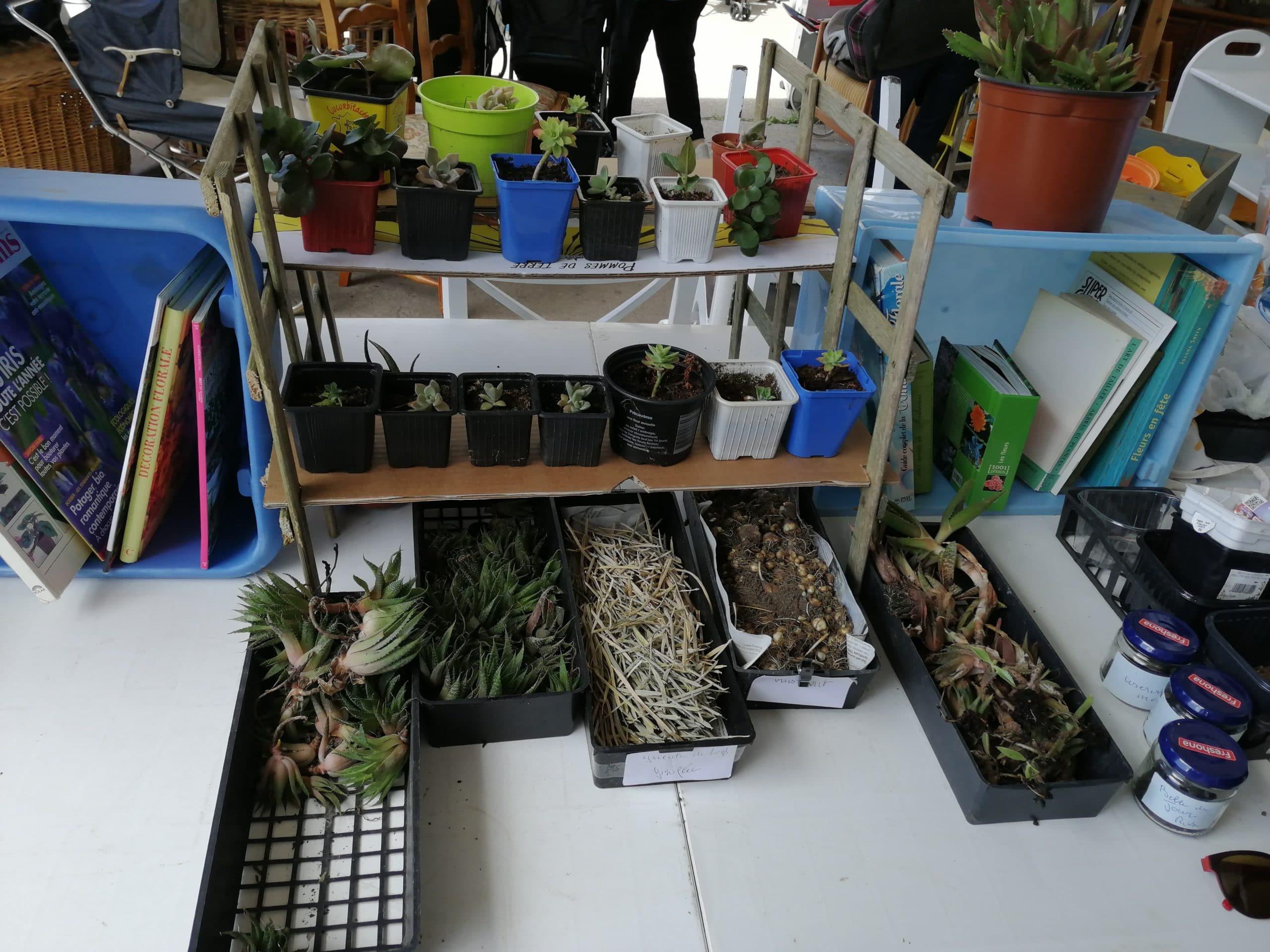 Bourse aux plantes réemploi recyclerie au bonheur de bennes saint nazaire 44